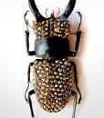 005_Beetle_HeadEnd_Pewter_close