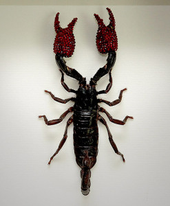 038_Scorpion_Red_Framed_full
