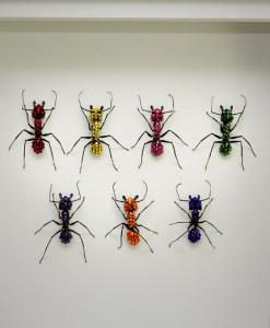 042_Ants_Rainbow_Framed_full