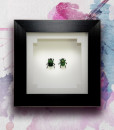 051_Green-Scarab-Beetles_Framed_featured