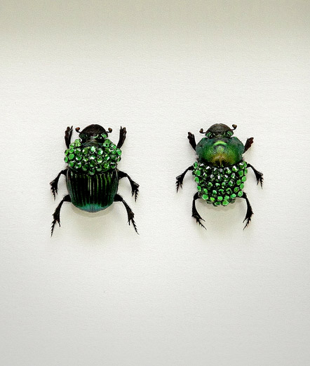 051_Green-Scarab-Beetles_Framed_full