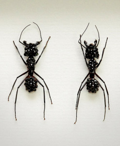 052_Ants_Black_Framed_fULL